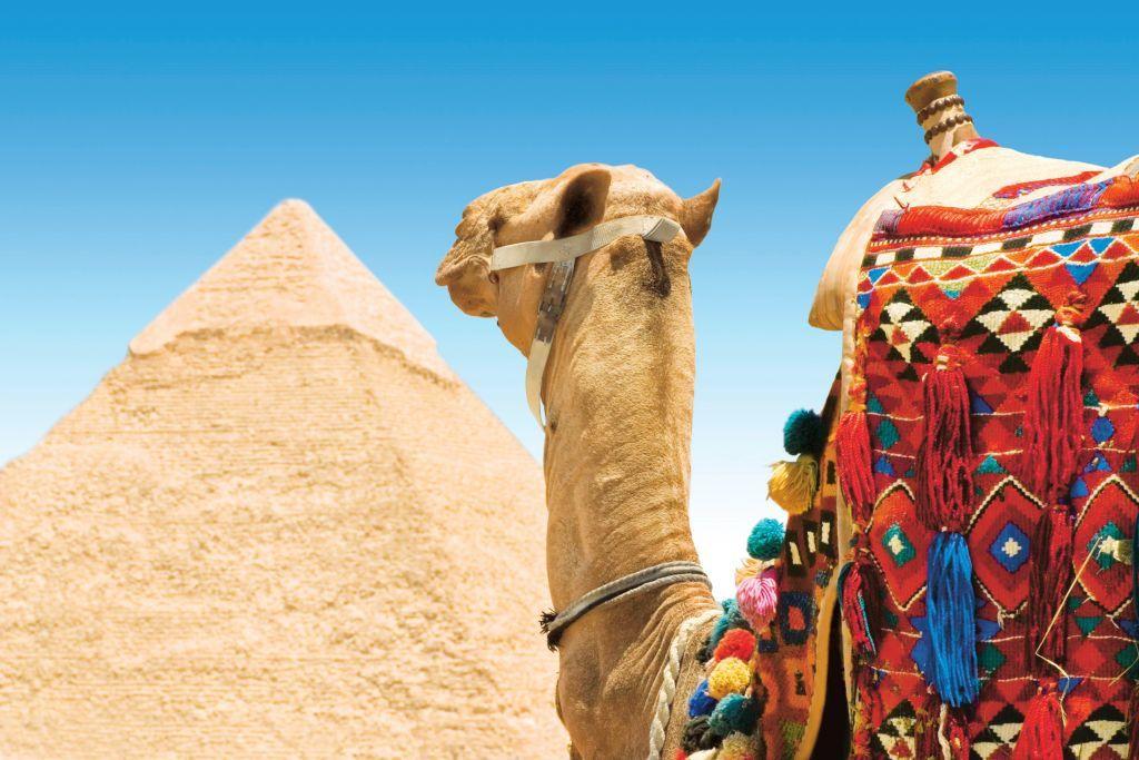TUI tours Egypt